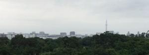 新木場駅からスカイツリーを撮影